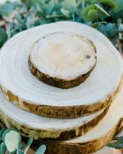 Baumscheibe Wald